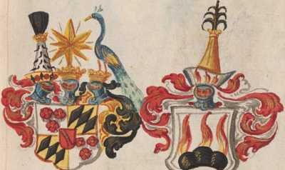 Wappen XII Henricus  from