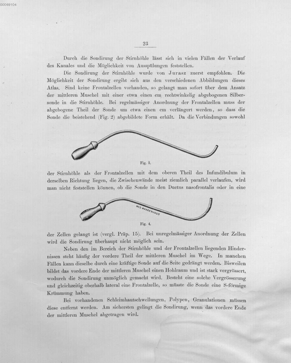 Wunderbar Anatomie Einer Languste Zeitgenössisch - Physiologie Von ...