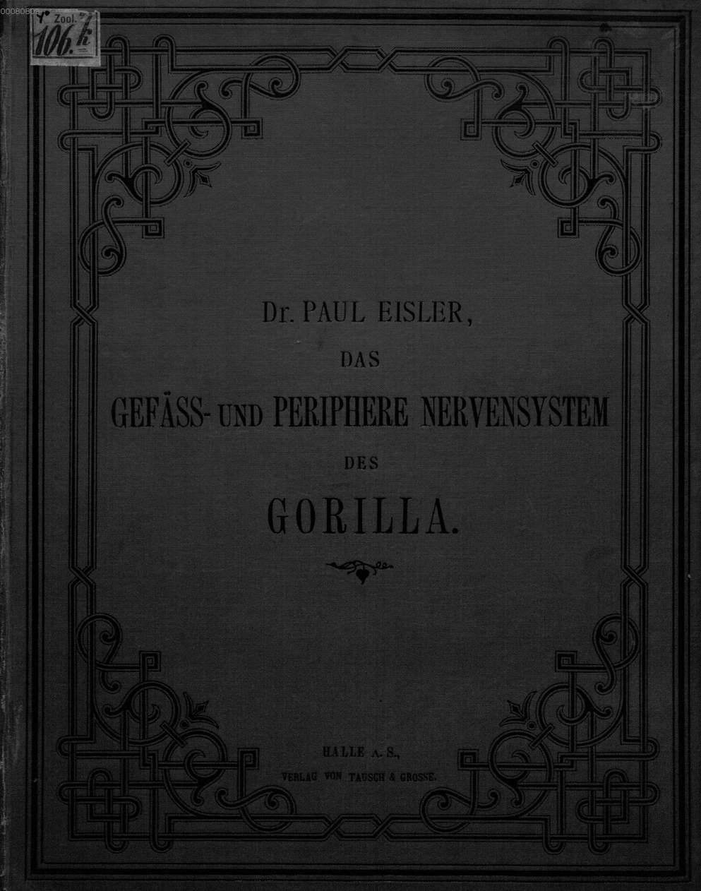 Ungewöhnlich Peripheres Nervensystem Besteht Aus Ideen - Physiologie ...